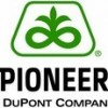 Pionner - A Dupont Company